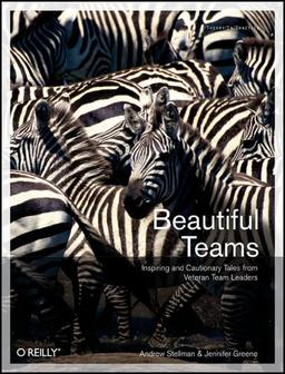 Beautiful Teams, 1. Auflage