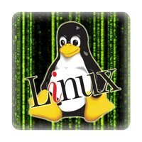 Tux in Matrix mit Linux
