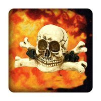 Sch�del in Flammen  PC-Sticker